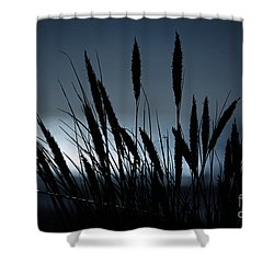 Wheat Stalks On A Dune At Moonlight Shower Curtain