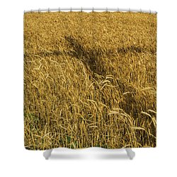 Wheat With Cross  Shower Curtain by Rob Graham
