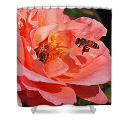 Wheels Down Shower Curtain by Rona Black