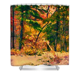 When Fall Becomes Winter Shower Curtain