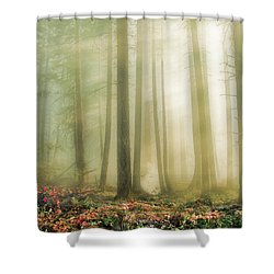 When God Smiles Shower Curtain