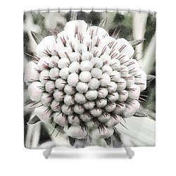When I'm 64 Shower Curtain by Steve Taylor