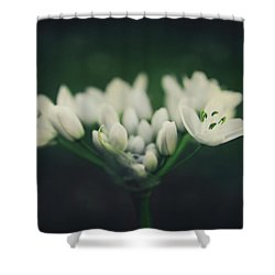 When Love Was Young And New Shower Curtain by Laurie Search