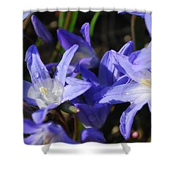 When The Sun Comes Out II Shower Curtain by Micheline Heroux