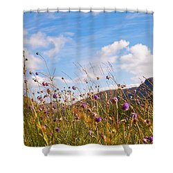 When The Sun Is Shining Everything Around Smiling Towards. Scotland Shower Curtain