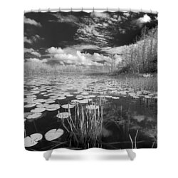 Where Angels Walk Shower Curtain