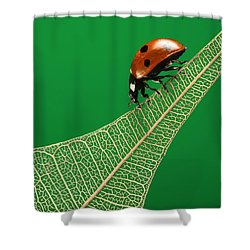 Where Have All The Green Leaves Gone? Shower Curtain