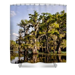 Where The Cypress Grows Shower Curtain by Lana Trussell