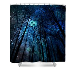 Where The Faeries Meet Shower Curtain