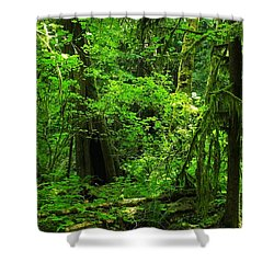 Where The Forest People Live Revised Shower Curtain