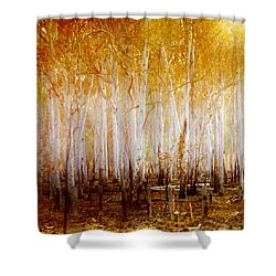 Where The Sun Shines Shower Curtain by Holly Kempe