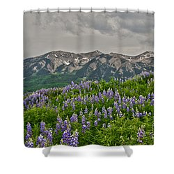 Whetstone Sunset Shower Curtain