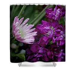 Whimsical Passion Shower Curtain