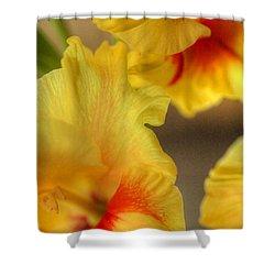 Whimsy Shower Curtain by Deborah  Crew-Johnson