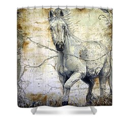 Whipsers Across The Steppe Shower Curtain