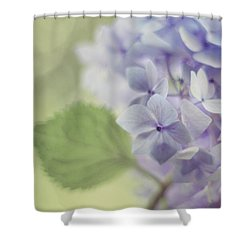 Whisper Shower Curtain by Amy Tyler