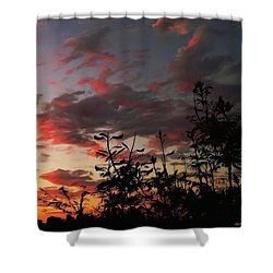 Whisper Of Evening Shower Curtain