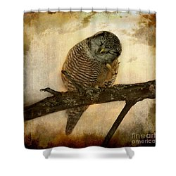 Whispered In The Sounds Of Silence Shower Curtain by Heather King