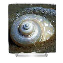 Whispering Tides Shower Curtain by Karen Wiles