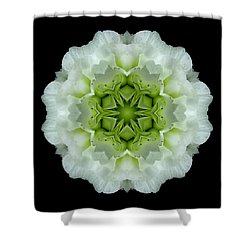 White And Green Begonia Flower Mandala Shower Curtain by David J Bookbinder