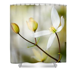 White Awake Shower Curtain