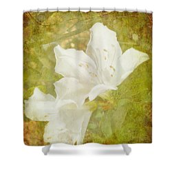 White Azalea Shower Curtain by Judy Hall-Folde