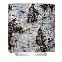 White Birch Abstract  Shower Curtain by Heidi Smith