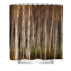 White Birch Abstract Shower Curtain by John Vose