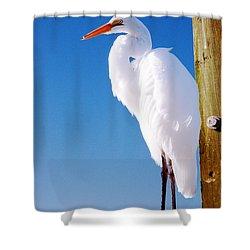 Great White Heron Shower Curtain by Vizual Studio