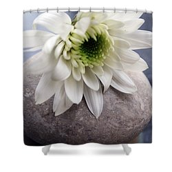 White Blossom On Rocks Shower Curtain