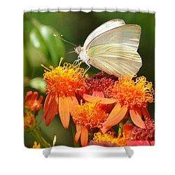 White Butterfly On Mexican Flame Shower Curtain