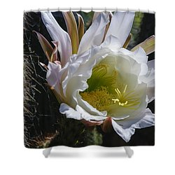 White Cactus Bloom Shower Curtain