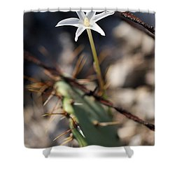 Shower Curtain featuring the photograph White Cactus Flower by Erika Weber