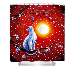 White Cat In Bright Sunset Shower Curtain