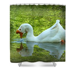 White Chinese Goose Curtsy  Shower Curtain