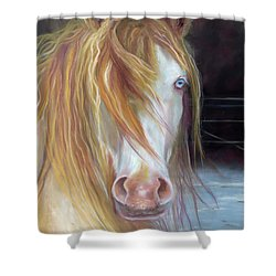 White Chocolate Stallion Shower Curtain by Karen Kennedy Chatham