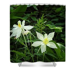 White Columbines Shower Curtain