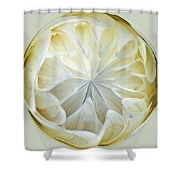 White Dahlia Orb Shower Curtain