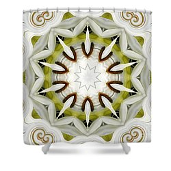 Shower Curtain featuring the photograph White Daisies Kaleidoscope by Rose Santuci-Sofranko