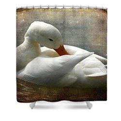 White Duck Shower Curtain by Barbara Orenya