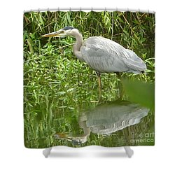 Shower Curtain featuring the photograph White Egret Double  by Susan Garren