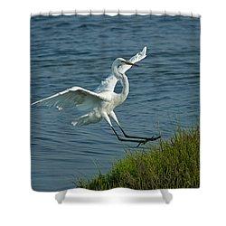 White Egret Landing 2 Shower Curtain by Ernie Echols