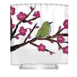 White Eye And Japanese Plum Tree Shower Curtain by Keiko Suzuki