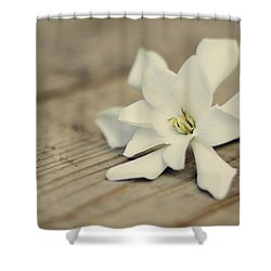 white gardenia shower curtain