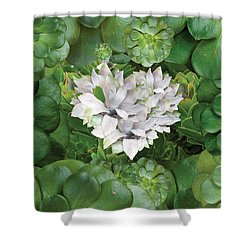 White Green Flower Shower Curtain by Alixandra Mullins