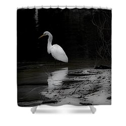 Shower Curtain featuring the photograph White Heron by Angela DeFrias