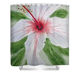 White Hibiscus Flower Shower Curtain