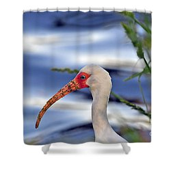 Intriguing Ibis Shower Curtain by Al Powell Photography USA