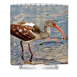 White Ibis Juvenile Shower Curtain