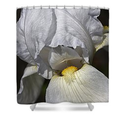 Shower Curtain featuring the photograph White Iris by Joy Watson